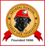 SAR dog adoption