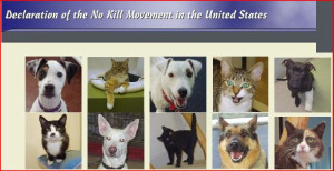 No kill movement
