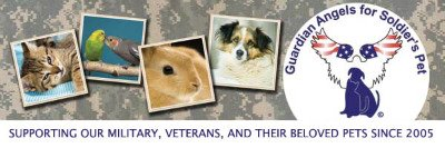 Foster a Military Dog